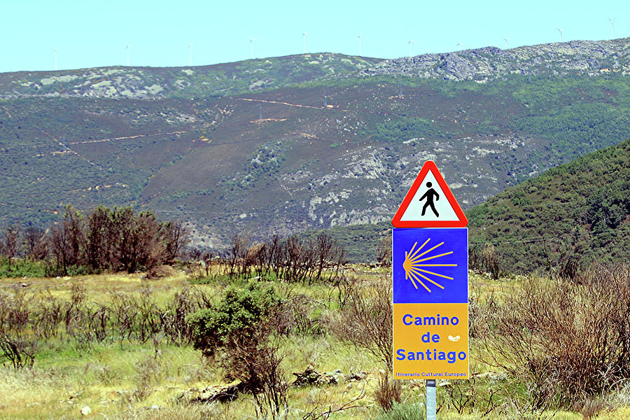 Camino Photograph - El Camino De Santiago De Compostela, Spain, Sign by Fran West