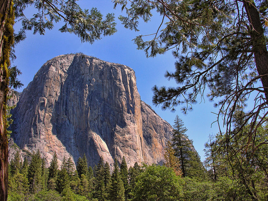 El Capitan Photograph