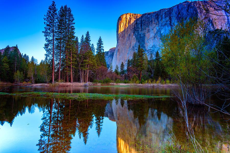 Yosemite Photograph - El Capitan by Rick Berk