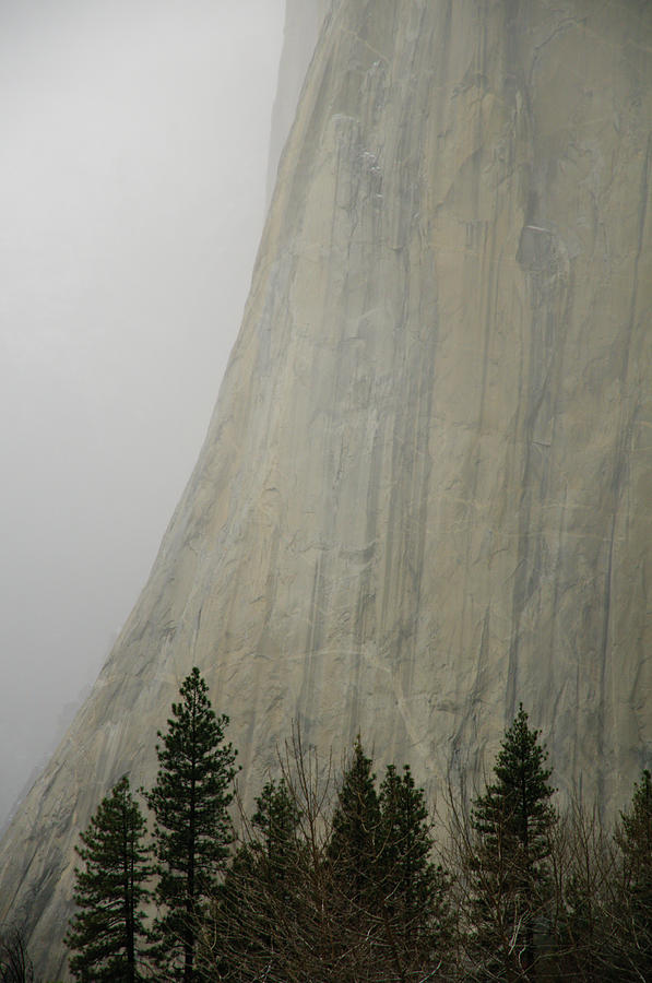 Vertical Photograph - El Capitan, Yosemite National Park by André Leopold