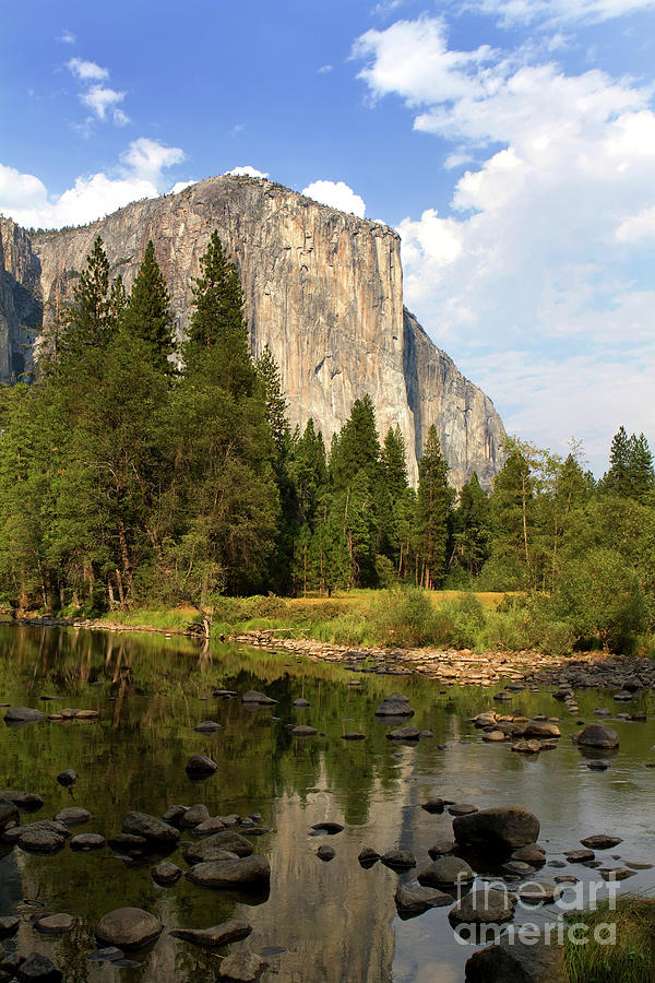 El Capitan Yosemite National Park California by Steven Frame