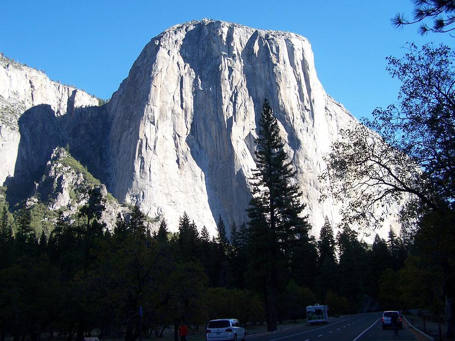 El Capitan Photograph - El Capitan Yosemite by Vijay Sharon Govender
