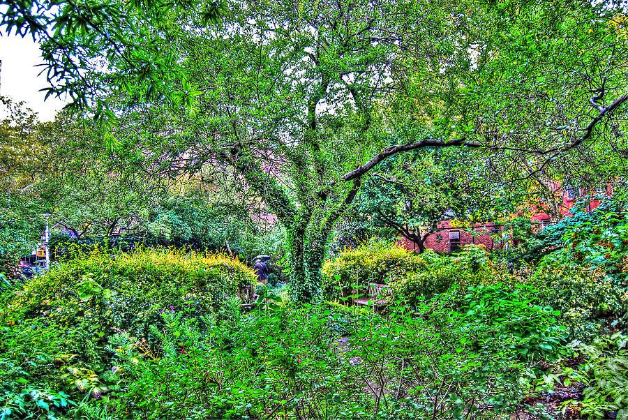 Greenwich Village Photograph - Elderly Man At St. Lukes Garden by Randy Aveille