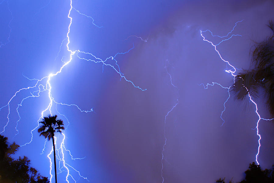 Lightning Photograph - Electric Night by James BO Insogna