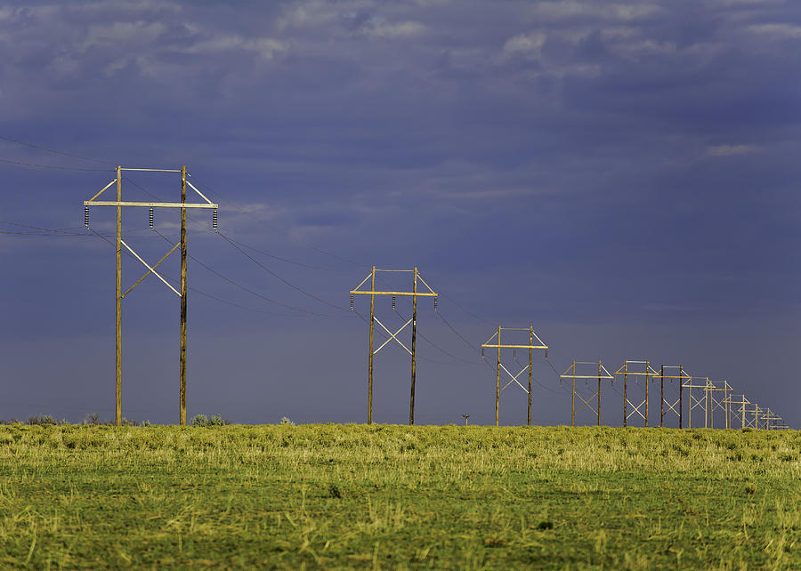 Agriculture Photograph - Electric Pasture by Melany Sarafis