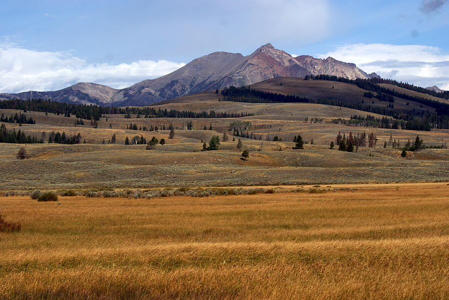 Yellowstone National Park Photograph - Electric Peak 2 by Marty Koch