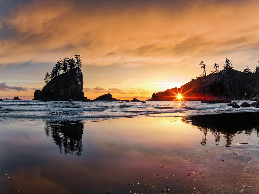Elegant Ocean Light by Leland D Howard