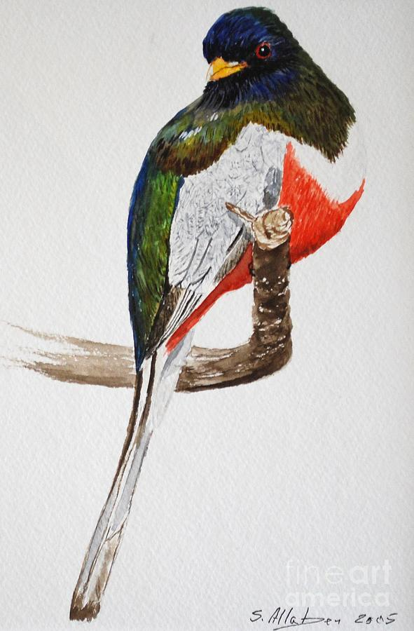 Bird Painting - Elegant Trogon by Stanton Allaben