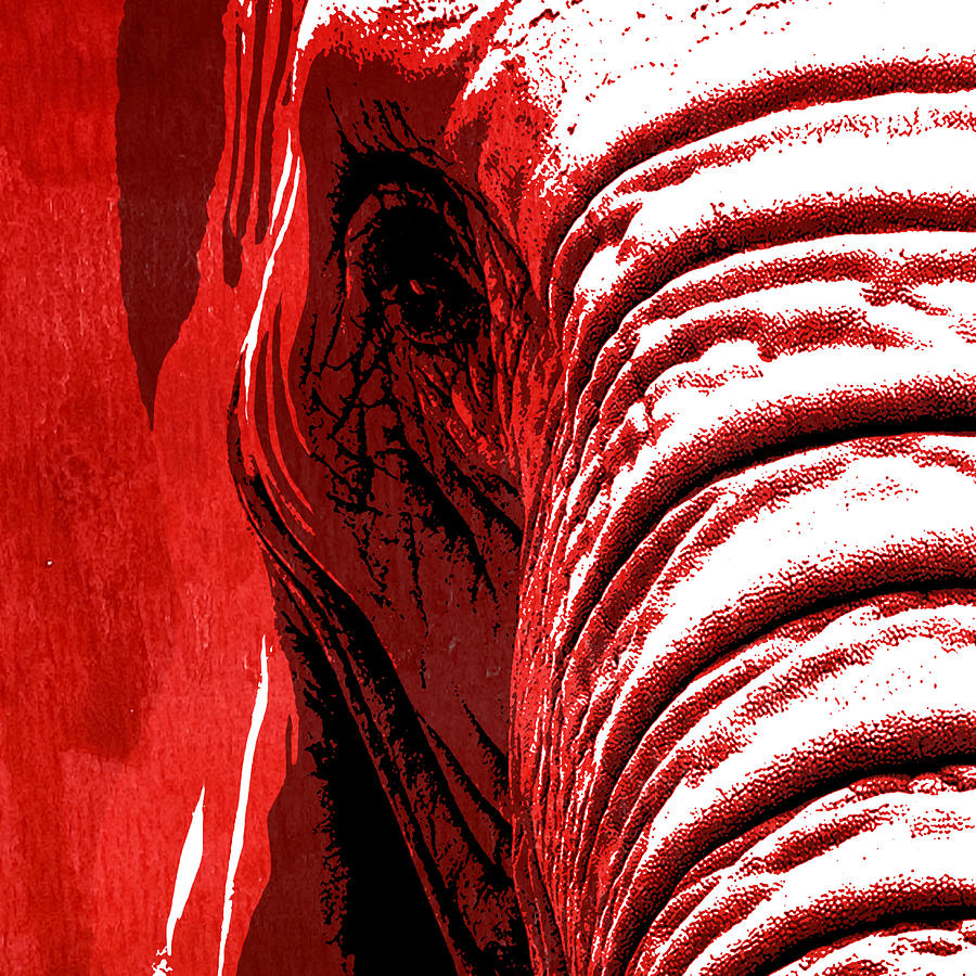 Elephant Painting - Elephant Animal Decorative Red Wall Poster 14 - By  Diana Van by Diana Van