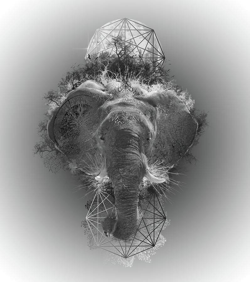 Fantasy Elephants Digital Art