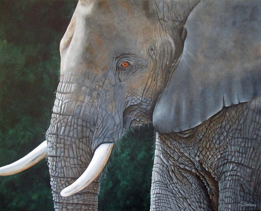 Elephant  by Debra Dickson