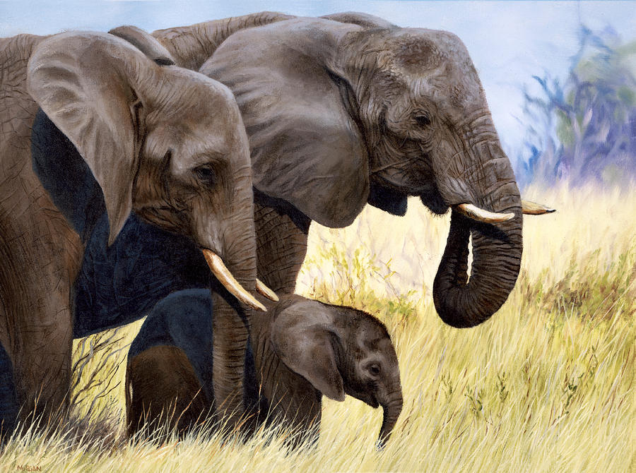 Elephant Family Painting Print Jason Morgan Painting By