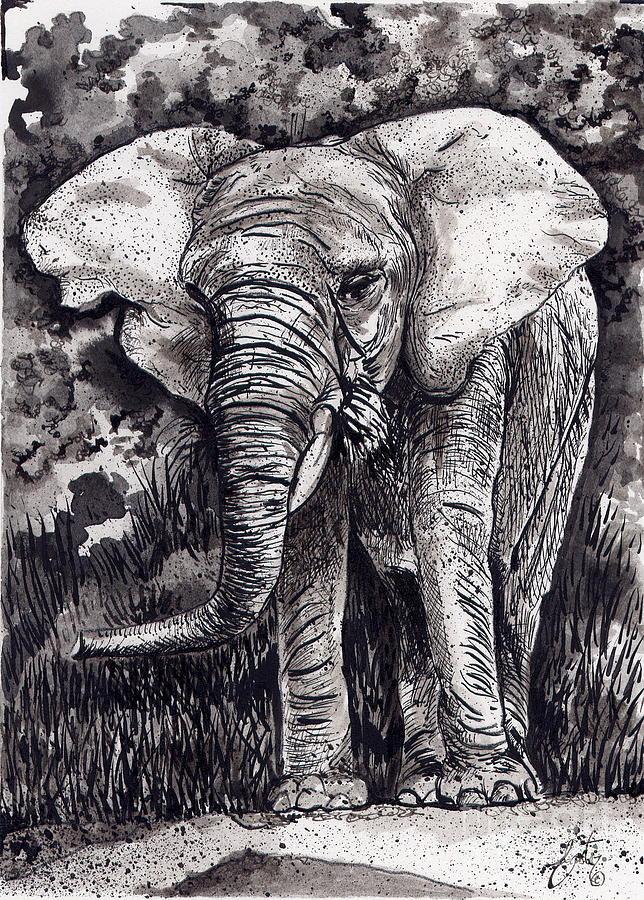 Elephant in Grey by Daniela Easter
