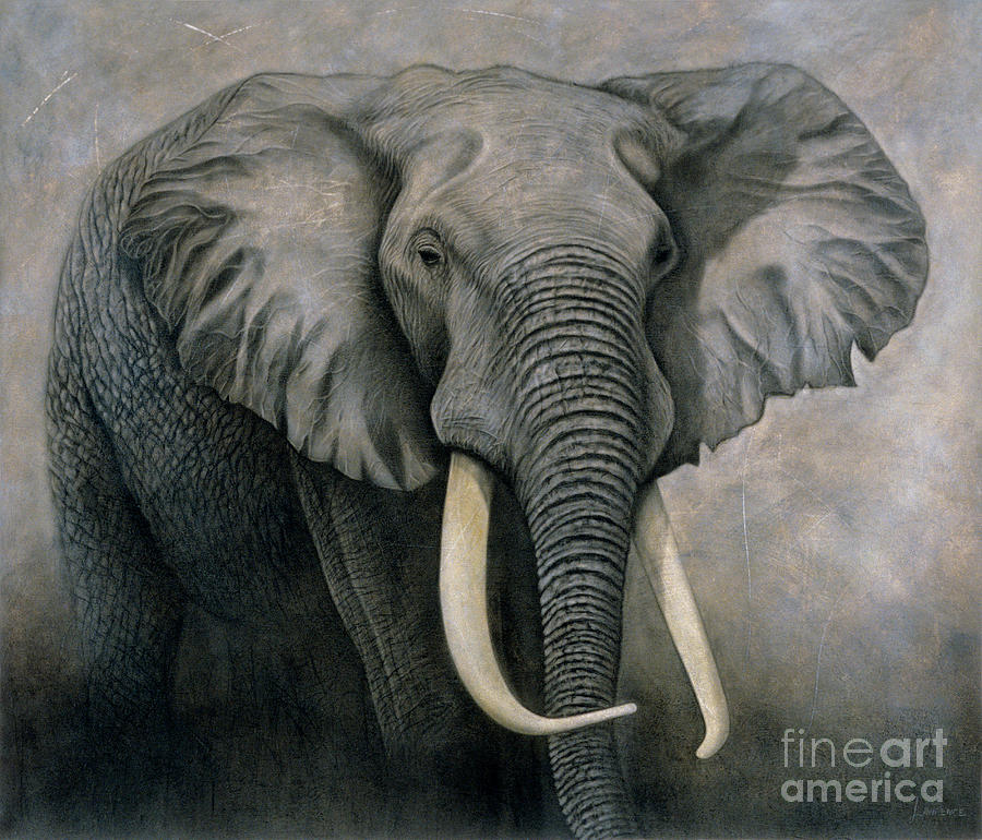 Lawrence Painting - Elephant by Lawrence Supino