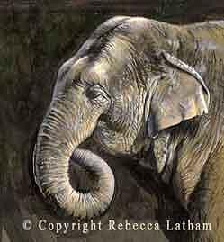 Elephant Painting - Elephant Miniature by Rebecca Latham
