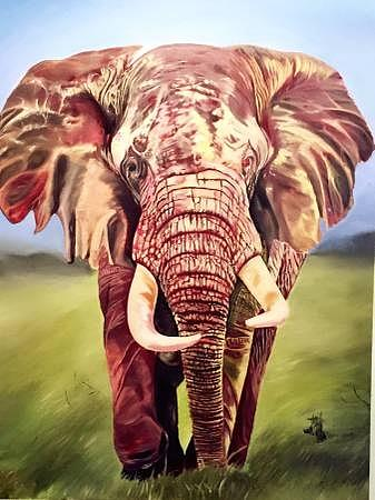 Elephant Oil painting Painting by Han Huang