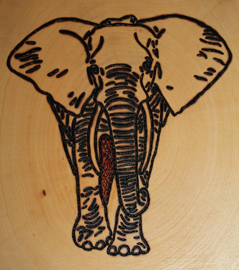 Elephant Photograph - Elephant by Rebecca Anne Grant