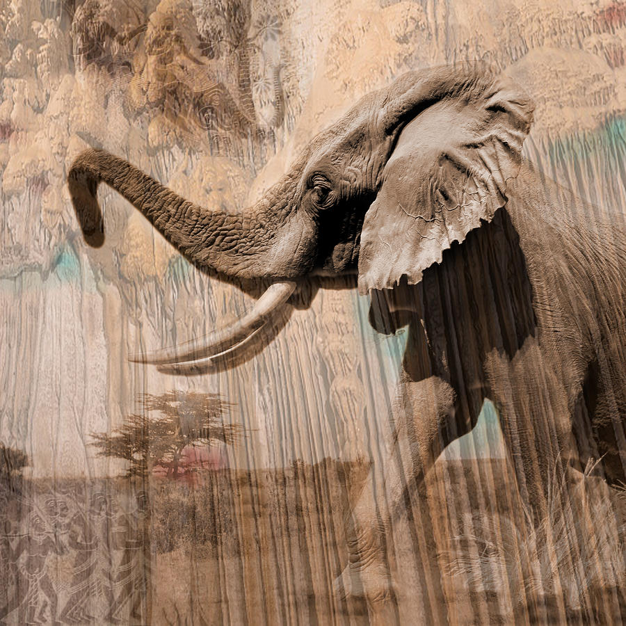 Elephant Photograph - Elephant Visions Wall Art by Karla Beatty