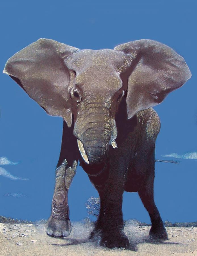 Africa Wild Life Painting - Elephant by W James Taylor