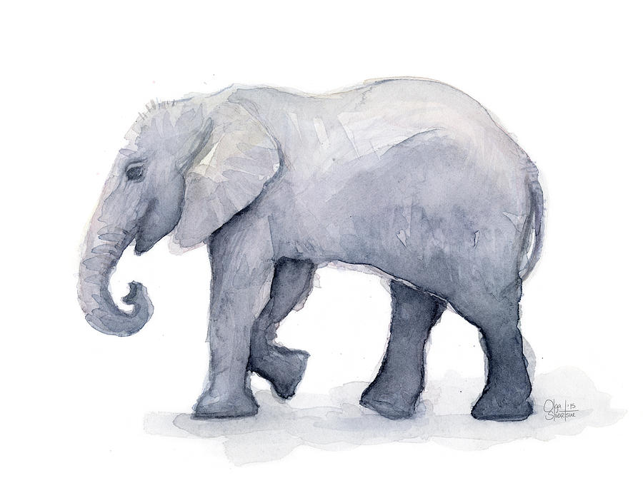 Elephant Watercolor Painting By Olga Shvartsur