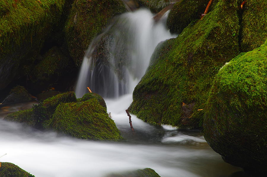 Elk Creek Detail 3 by Ken Dietz