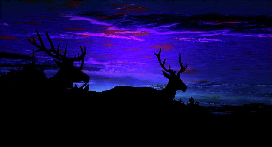 Elk Silhouette Evening Dreamscape Mixed Media