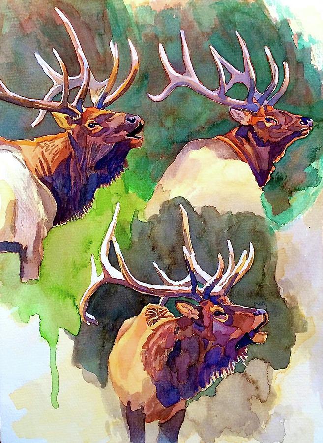 Painting Painting - Elk Studies by Dan Miller