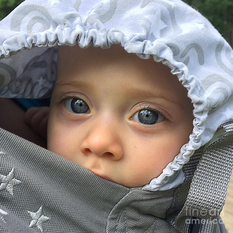 Baby Photograph - Blue Eyes by Gregory Schultz