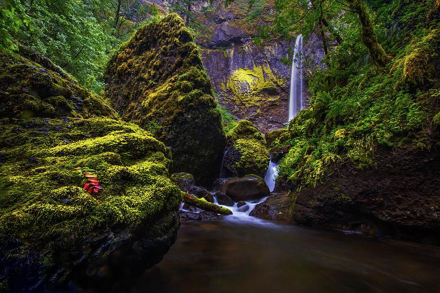 Elowah Falls Photograph - Elowah Falls by Ryan Smith