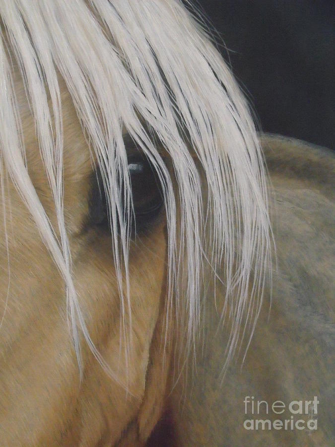 Horse Painting - Elsa-peeping Out by Pauline Sharp