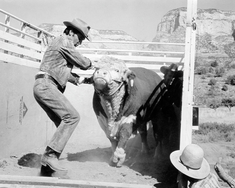 Elvis Photograph - Elvis with Bull by Bob Bradshaw