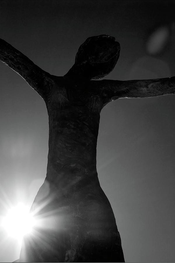 Silhouette Photograph - Embrace by Lisa Knechtel