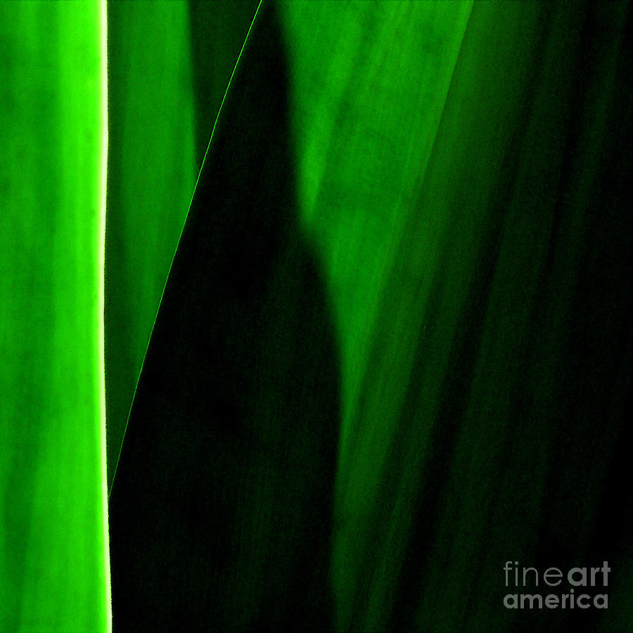 Abstract Photograph - Emerald by James Temple