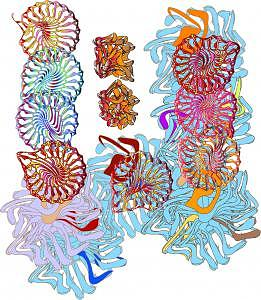 Cell Division Digital Art - Emerging Life by Shirley Sacks