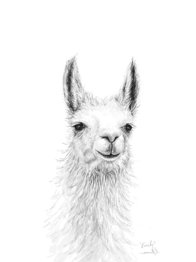 Llamas Drawing - Emily by K Llamas