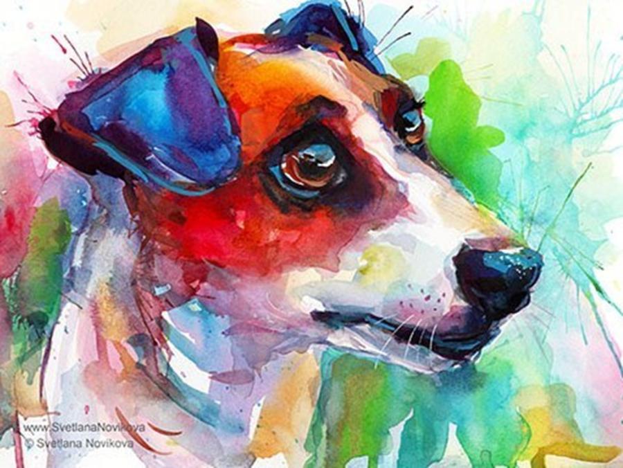 Painting Photograph - Emotional Jack Russell Terrier by Svetlana Novikova