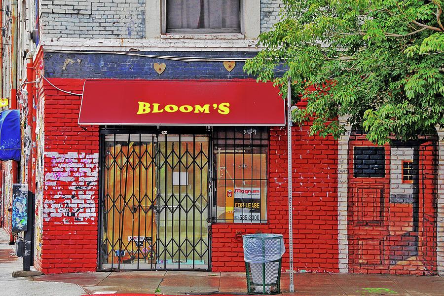 Empty Bloom's by Lyle  Huisken