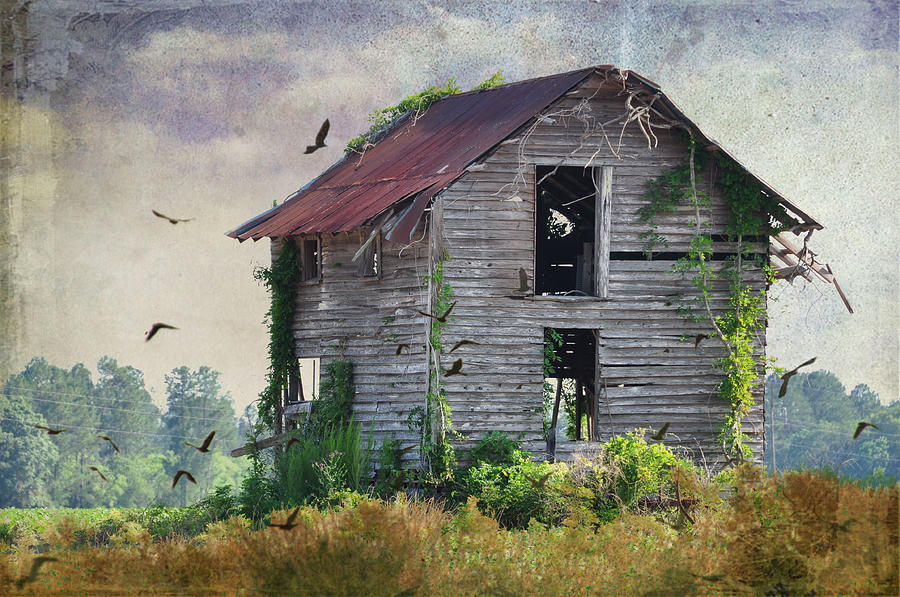 Landscapes Photograph - Empty Spaces by Jan Amiss Photography