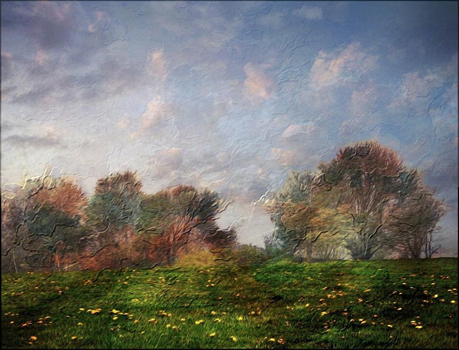 Emulating Van Gogh by Phyllis Meinke