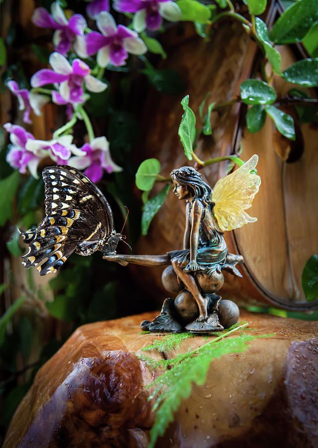 Fairylands Photograph - Enchanted Encounters by Karen Wiles