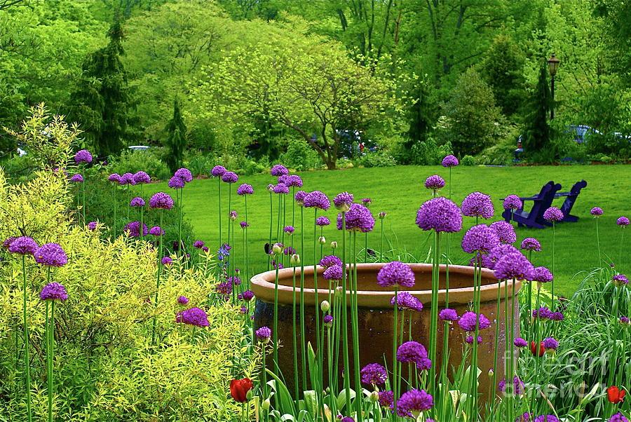 garden photograph enchanted garden by byron varvarigos - Enchanted Garden