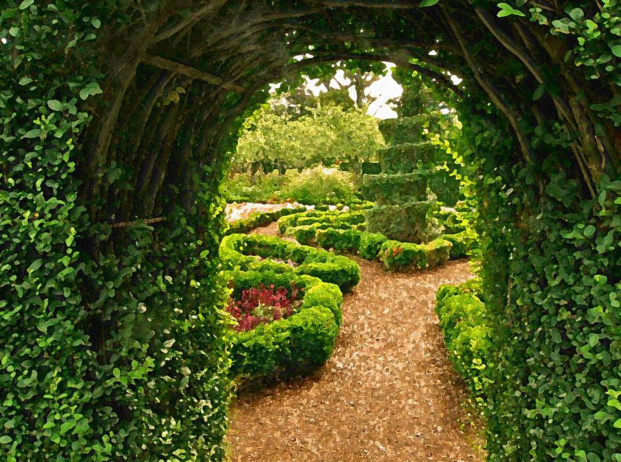 Enchanted Garden: Enchanted Garden Photograph By Jean Hall