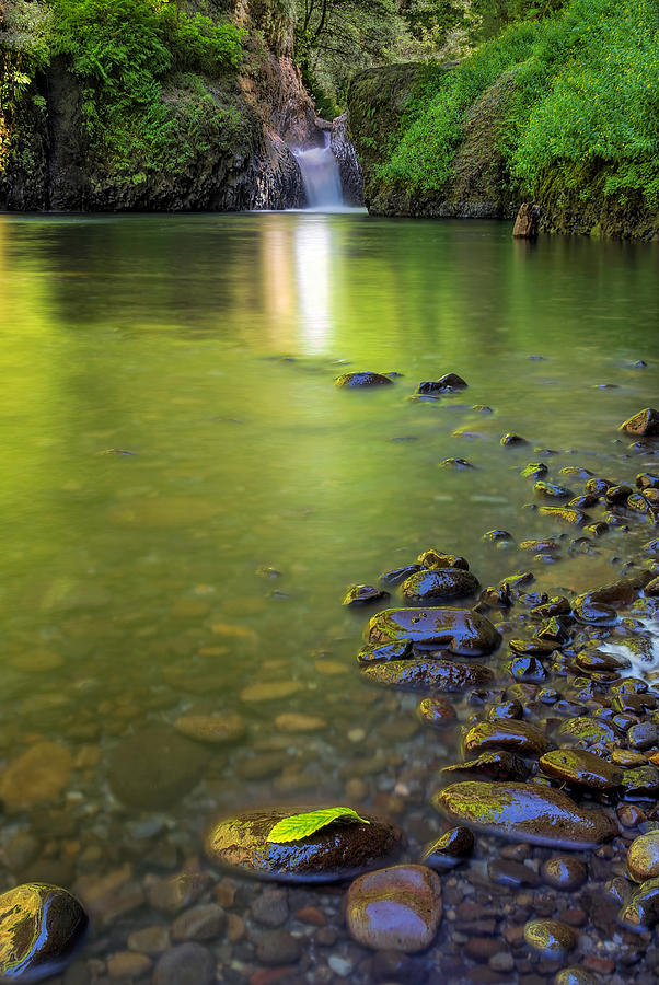 Columbia River Gorge Photograph - Enchanted Gorge Reflection by David Gn