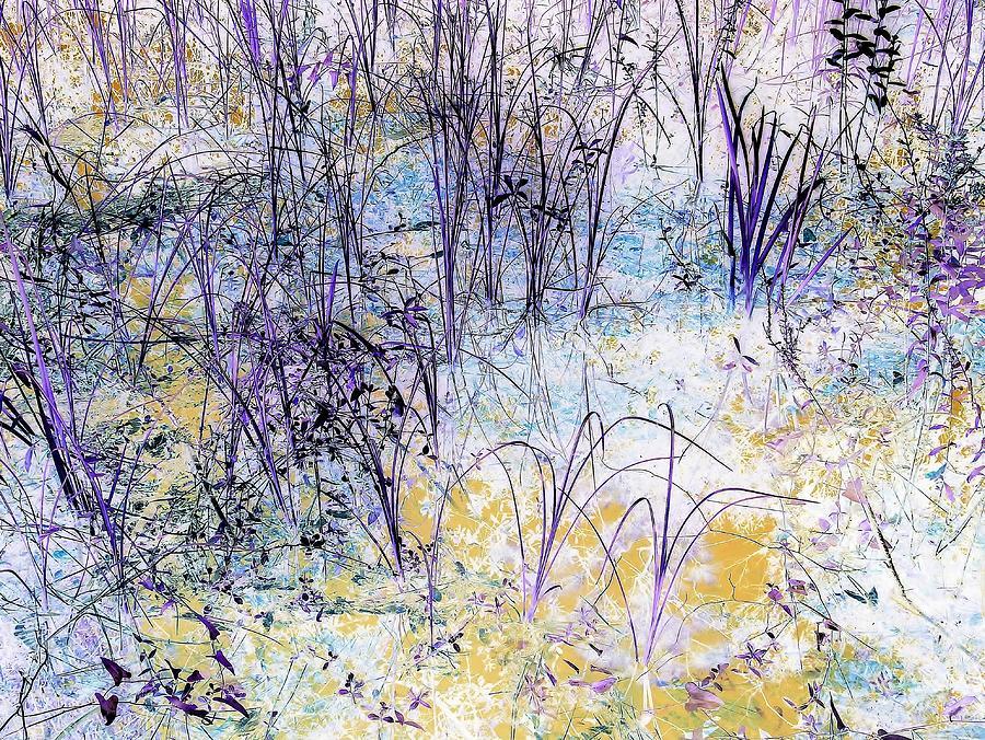 Enchanted by John Hintz