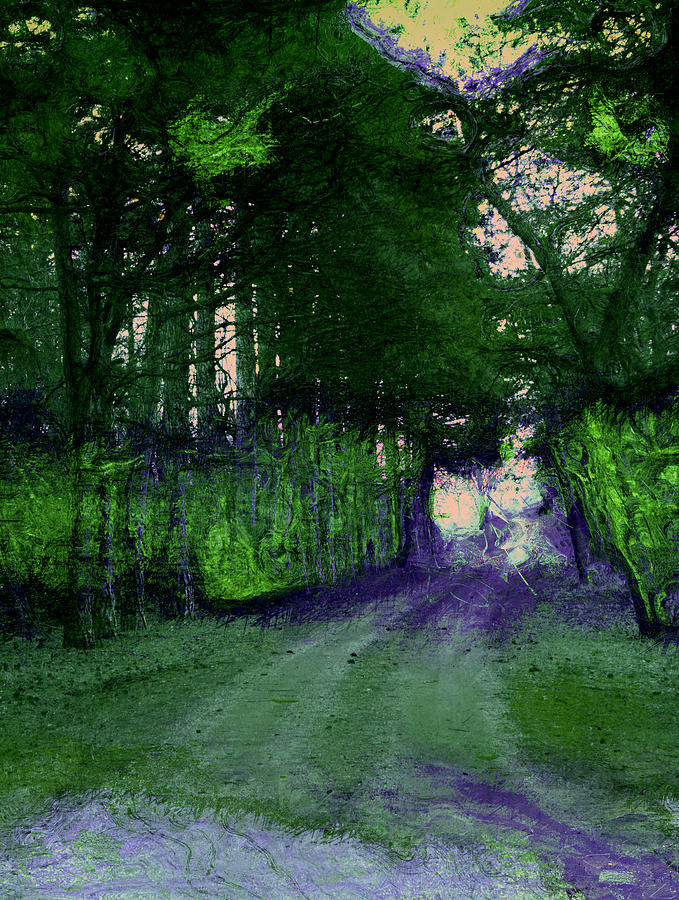 Wooded Path Photograph - Enchanted Way by Julie Lueders