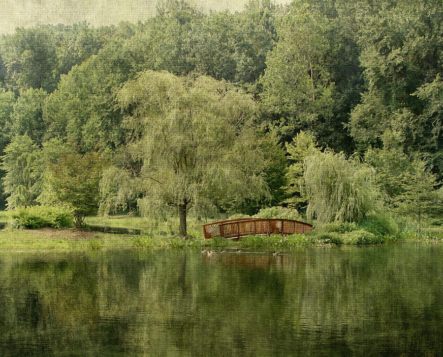 Beautiful Photograph - Endless Beauty by Kim Hojnacki