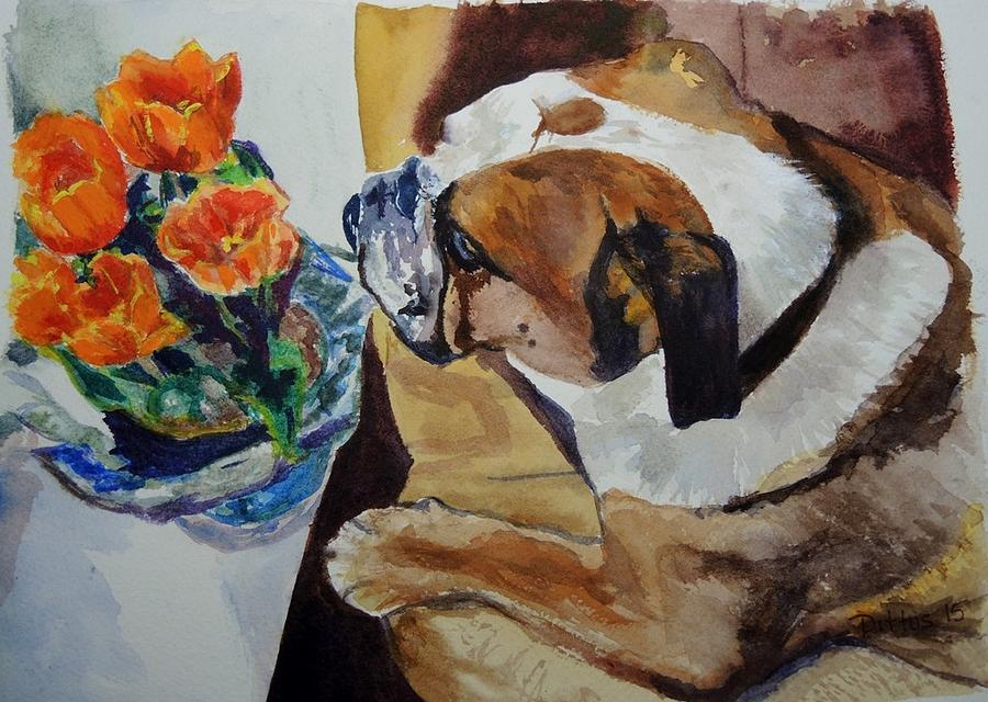English Bulldog by Chrissey Dittus