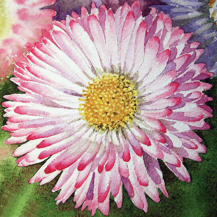 English daisy flower painting by irina sztukowski english daisy painting english daisy flower by irina sztukowski izmirmasajfo