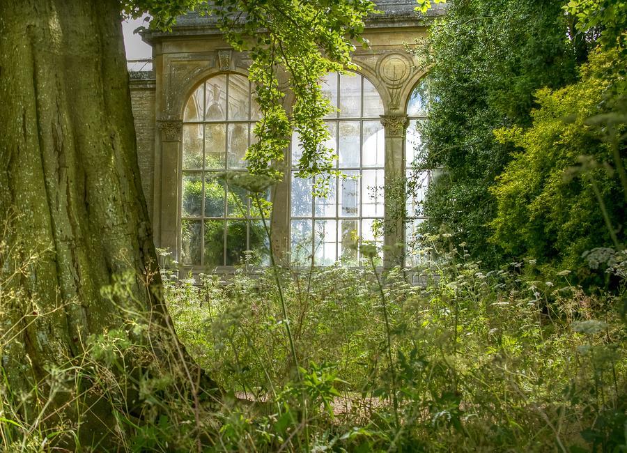 English orangery by Jenny Setchell