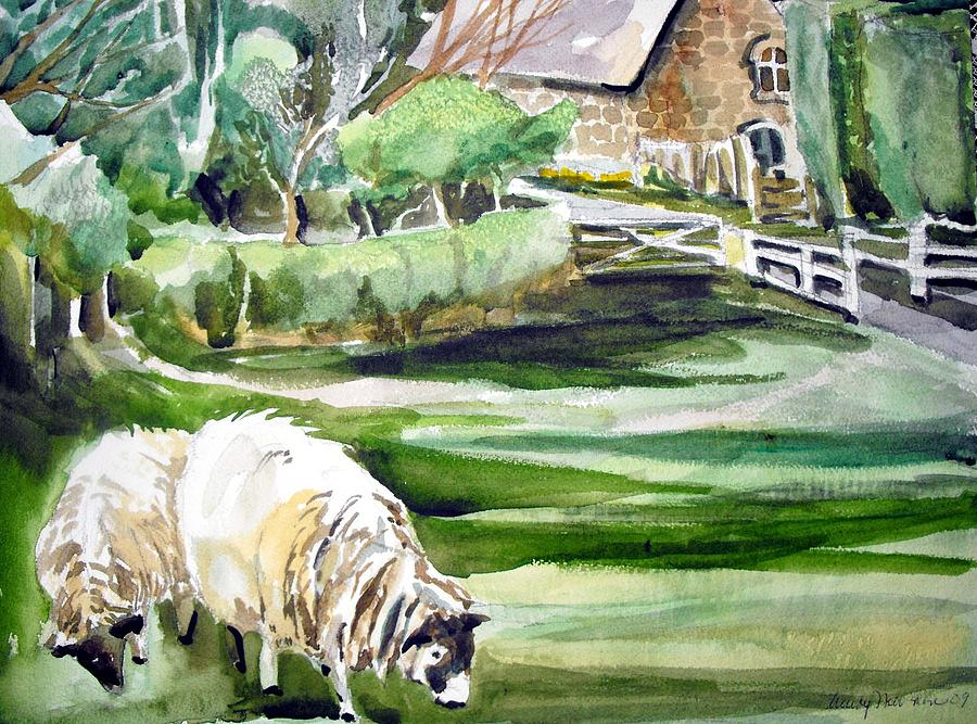 Watercolor Painting - English Sheep by Mindy Newman